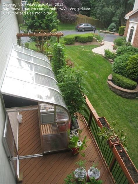 How to extend your growing season with this sturdy 10' x 12' energy efficient high tunnel greenhouse, start your farm or homestead off right. Greenhouse: Lean-to greenhouse on deck?, 2 by VitaVeggieMan