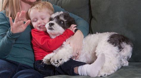 Dogs don't like hugs, study shows   FOX5 San Diego - San