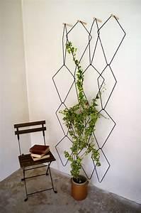 Plante Intérieur Grimpante : plante grimpante mur interieur ~ Louise-bijoux.com Idées de Décoration