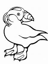 Puffin Coloring Pages Leg Rock Printable Baba Ws Template Animal Drawings Printables Sheet Getcolorings Activities Awesome Crested Tufted sketch template