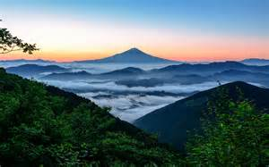 Japan Fuji Mountain Forest