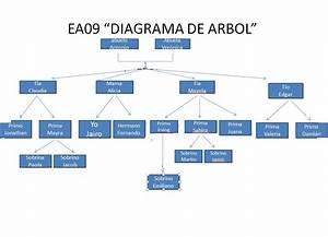 Christian Jairo Tejada Rodriguez Ea31  Ea09  U0026quot Diagrama De Arbol U0026quot