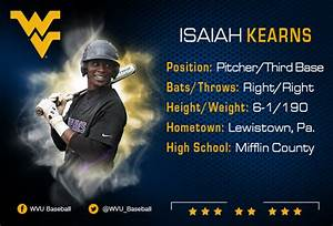 High school baseball: Mid-Penn Commonwealth preview ...