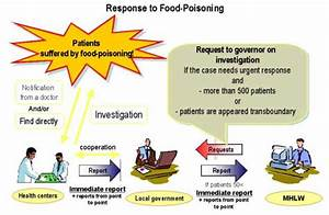 Second FAO/WHO Global Forum of Food Safety Regulators