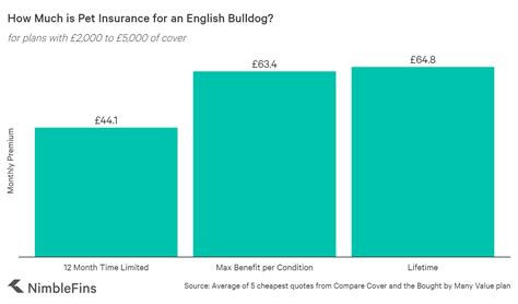 How much does life insurance cost. Average Cost of Bulldog Insurance 2020 | NimbleFins