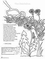 Dandelion Coloring Poem Poems Lindsay Vachel Pages Poetry Colouring Tweetspeakpoetry Stress Adults Adult Flower English Education Teachers Teacher sketch template