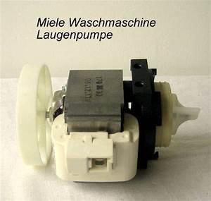Miele Waschmaschine Pumpe : miele pumpe preisvergleiche erfahrungsberichte und kauf ~ Michelbontemps.com Haus und Dekorationen