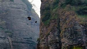 Extreme Stuntman Jeb Corliss Was 'Gripped With Fear ...