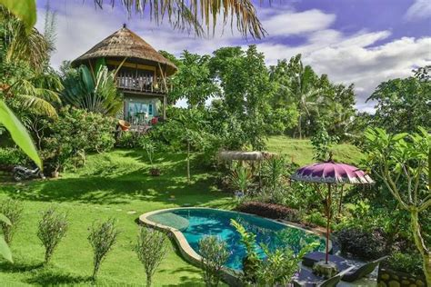 Tree House Airbnb Treehouse Airbnb Is The Bali Getaway You Crave
