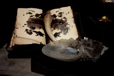 harry potter et la chambre des secrets en l 39 expo harry potter dévoile ses secrets à la cité du cinéma