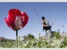 30 April 2012 « Fotografije dana