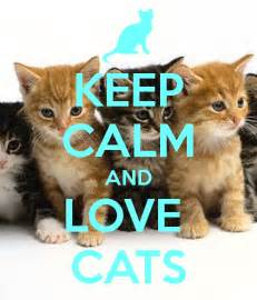 and cats keep calm and cats poster kitteh keep calm o matic