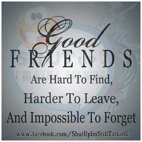 Good Friends Are Hard To Find, Harder To Leave, And