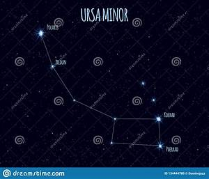 Ursa Minor Constellation  Vector Illustration With The