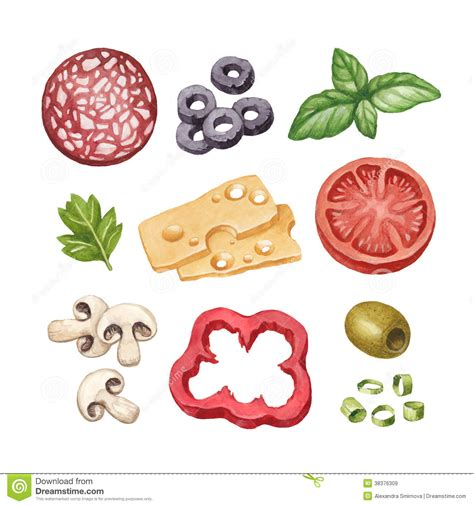 illustration cuisine illustration of food ingredients stock illustration