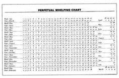 Newborn Puppy Weight Chart Canine Whelping Temperature Chart Dogs Can Safely Whelp
