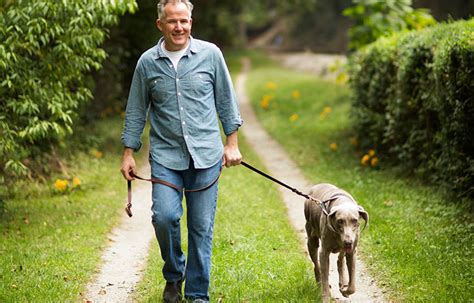 walking dog older adults researchers boost activity say