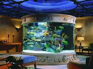 Home Aquarium  The Best Size And Location  U2013 Home And
