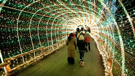 allentown zoo christmas lights decoratingspecial com