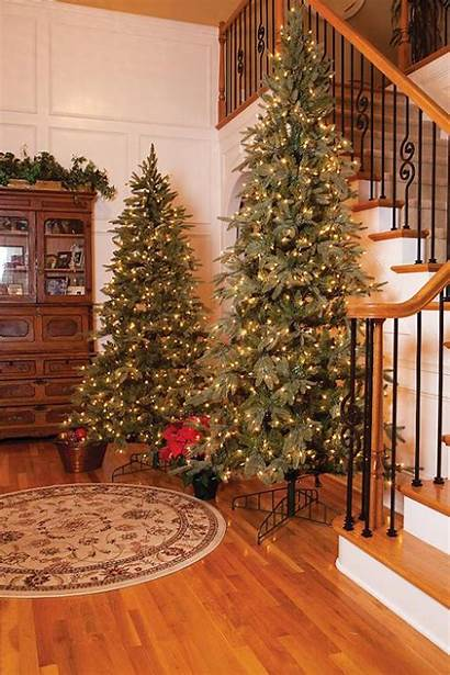 Christmas Indoor Decorations Decoration Easyday Source Trees