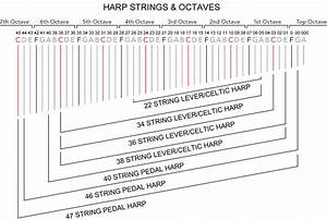 How To Identify Harp Strings