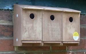 Sparrow Terrace Nest Box | NHBS Wildlife Conservation Shop
