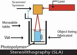 Rabbit Form Stereolitografia  Sla Lub Sl