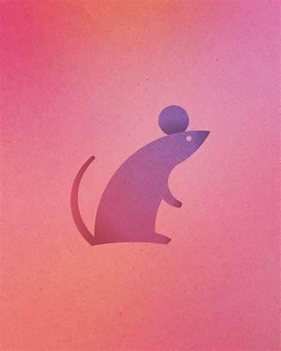 Circles Animal Logos Perfect Colorful Mouse Rabbit