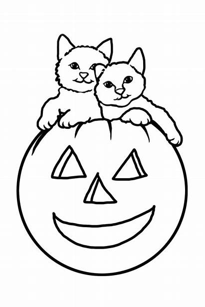 Halloween Cats Coloring Pages Pumpkin