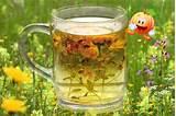 Похудеть на зеленом чае. неделю один чай