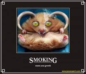 Funny Quotes About Smoking. QuotesGram
