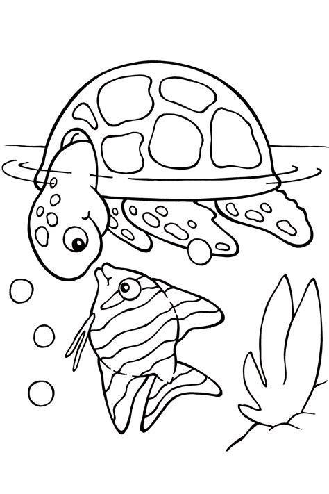 sea turtle coloring pages    print