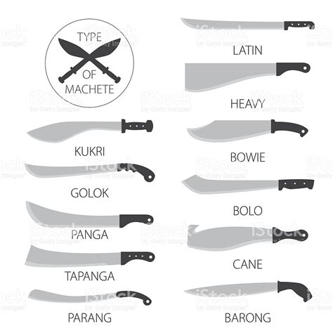 different kinds of kitchen knives types of knives machetes stock vector art 544722056 istock