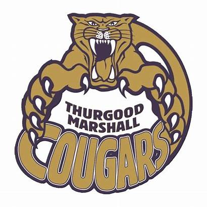 Thurgood Marshall Hoop