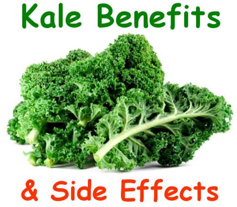 What Does Kale Look Like