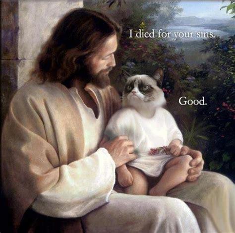 Jesus Cat Meme - picz i like grumpy cat and jesus