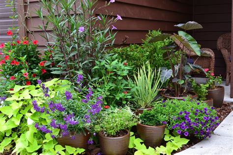 Best Plants For Container Garden  Ward Log Homes