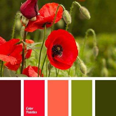 colors that compliment olive green 1000 ideas about color combinations on