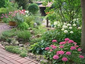 Welche Pflanzen Passen Gut Zu Hortensien : ballhortensie 39 annabelle 39 hydrangea arborescens ~ Lizthompson.info Haus und Dekorationen
