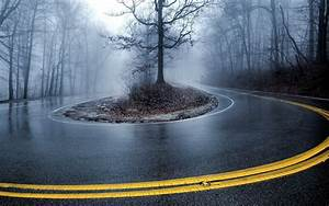 Road, Mist, Trees, Nature, Wallpapers, Hd, Desktop, And, Mobile, Backgrounds