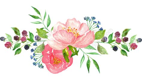 watercolor clipart transparent - Google Search | ดอกไม้ ...