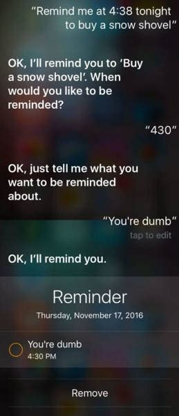 hilarious answers    siri stupid questions