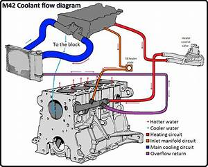 Direction Of Coolant Flow In An E30 M42
