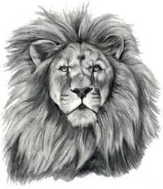 Lion Head Tattoo Design