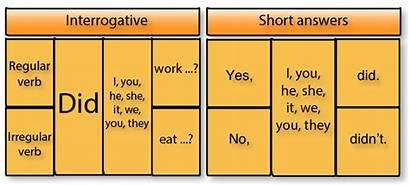 Negative Interrogative Verb Forms Sentences Verbs Past