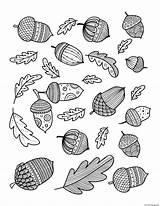 Coloring Oak Leaf Acorn Fall Doodle Adults Autumn Printable sketch template