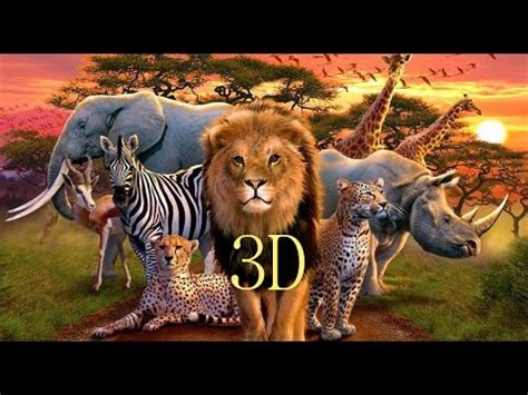 """3DinTV """"WILDLIFE SOUTH AFRICA"""" YouTube"""