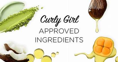 Ingredients Curly Devacurl Hair Guide Services Approved