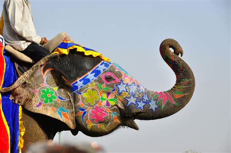 unique festivals   world