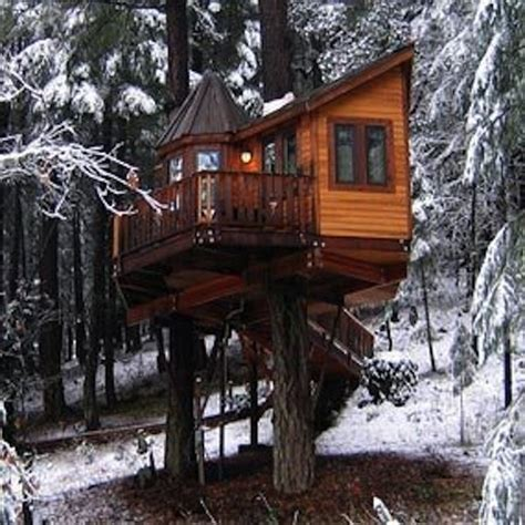 I stood at the top of my treehouse that morning. Kelly Osbourne - Treehouse | Träkoja, Drömhus, Arkitektur